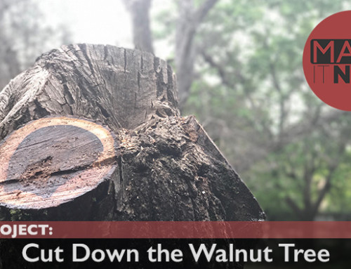 Side Project: Cut Down the Walnut Tree